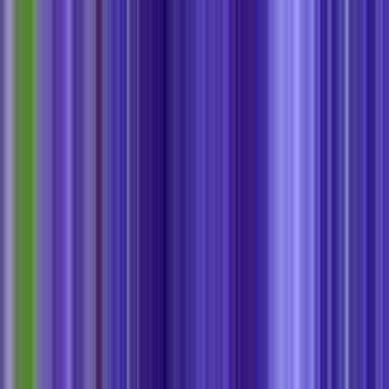 Iris | 1000