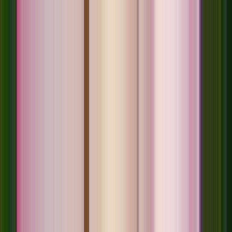 Lotus | 165